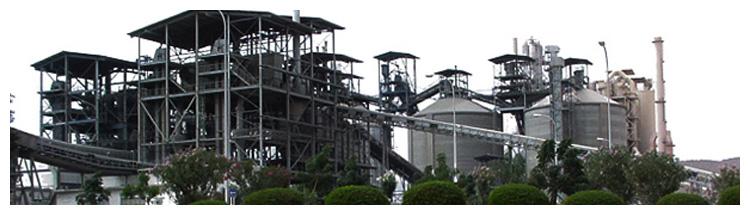 Alyasmine Aldawlia | Oman Cement Company
